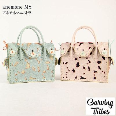 anemone MS